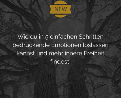 Blogpost Emotionen